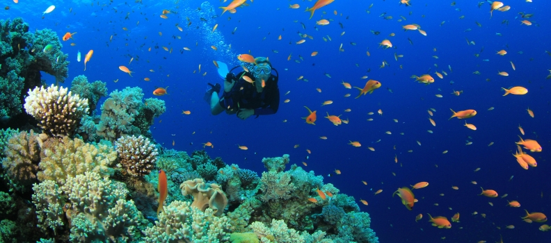 The influence of yoga on scuba diving